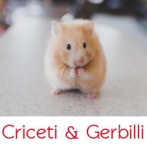 CRICETI & GERBILLI
