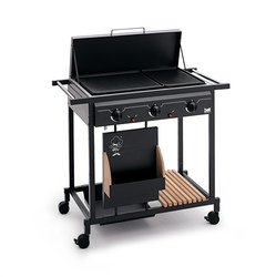Barbecues professionale a gas BST Magnum bistecchiera centrale MULTIGAS ART 205