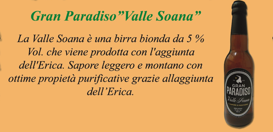 "Birra artigianale ""VALLE SOANA"""