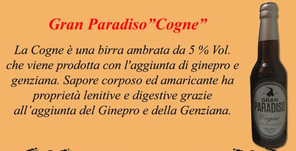 """Birra Artigianale """"COGNE"""""""