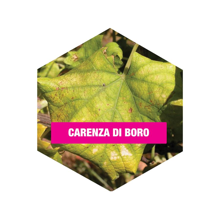 Concime BIO Alt Microcarenze Flortis 100 gr