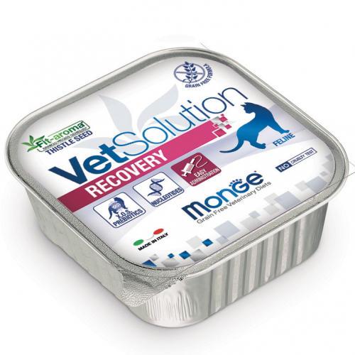 Feline - Recovery Vetsolution Monge 100 gr