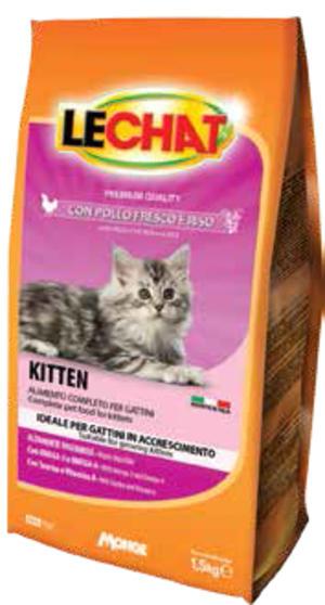 Gatto - Kitten Lechat 1,5 Kg