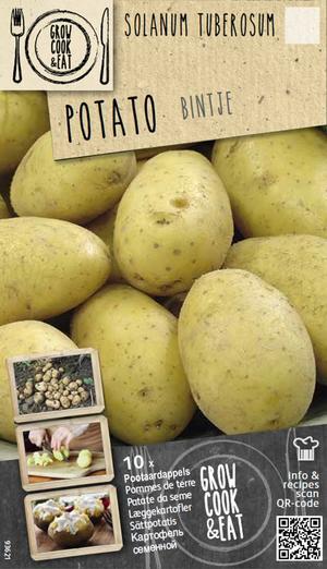 Bulbi di Patate Bintje confezione da 10 pz