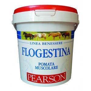 Flogestina Gel Pearson 1,5 Kg