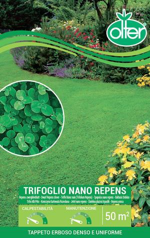 Trifoglio Nano Repens Olter Disponibile nei Formati 100 - 500 GR