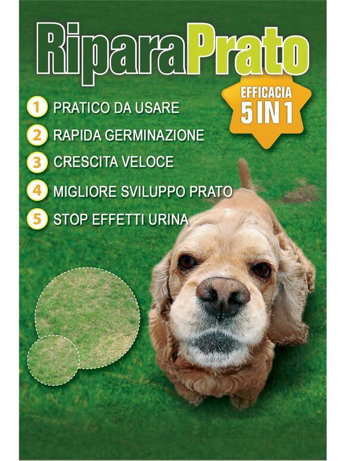 Prato - Riparaprato 5 IN 1 900 gr