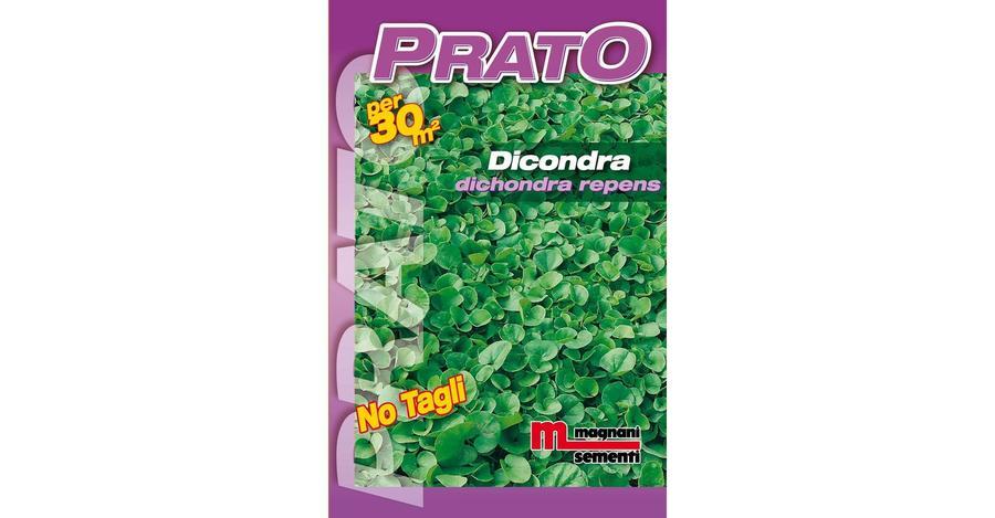 Dichondra Repens 200 gr