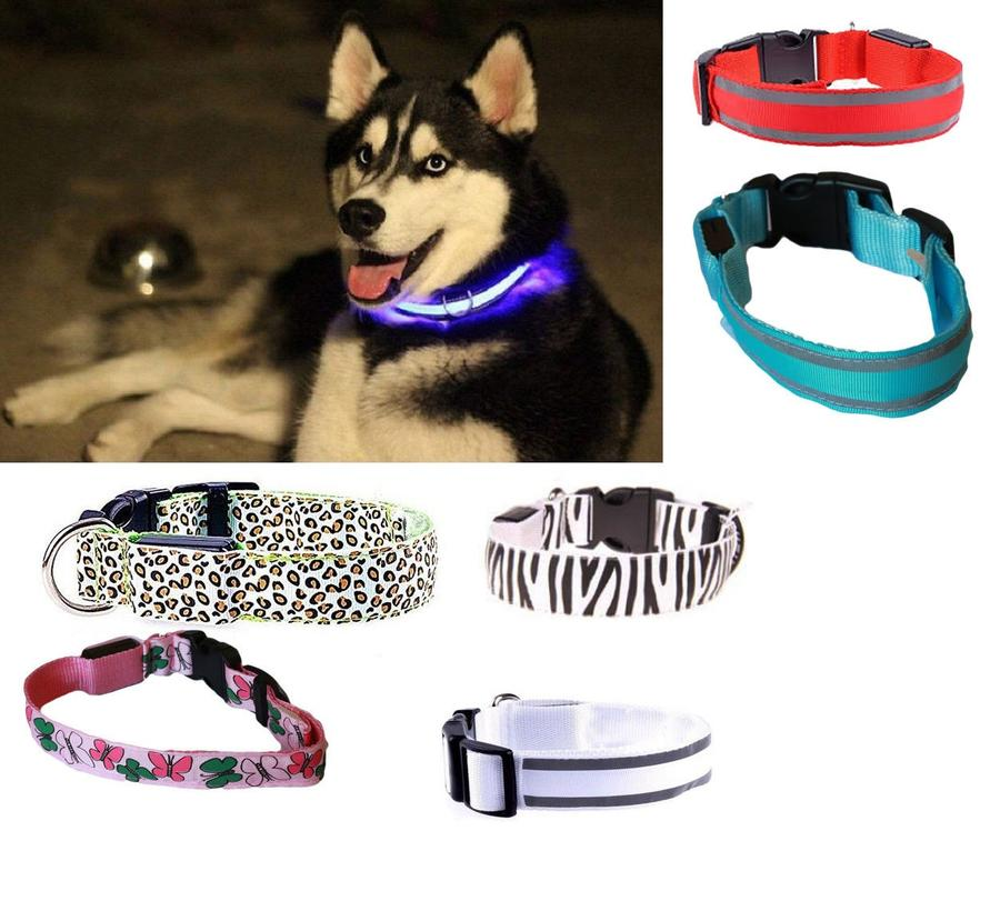 COLLARE PER CANE CANI A LED LUMINOSO TG S/M/L SICUREZZA LED NOTTURNO CLIP FANTASIA