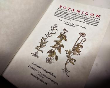 Herbarium - Botanicon continens Herbarum Aliorumque Simplicium, quorum usus in Medicinis est - Theoderico Dorsten, edizione 1540 - REPLICA