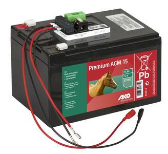 Batteria AGM 12 V 15 Ah