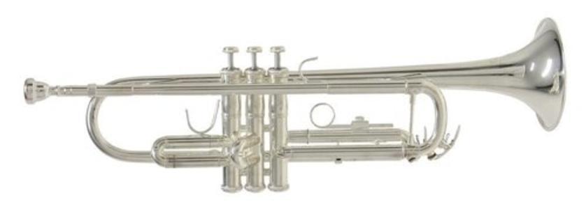 Bach Tromba in Sib TR650S