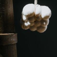 Bagno doccia  solido piccoli semi