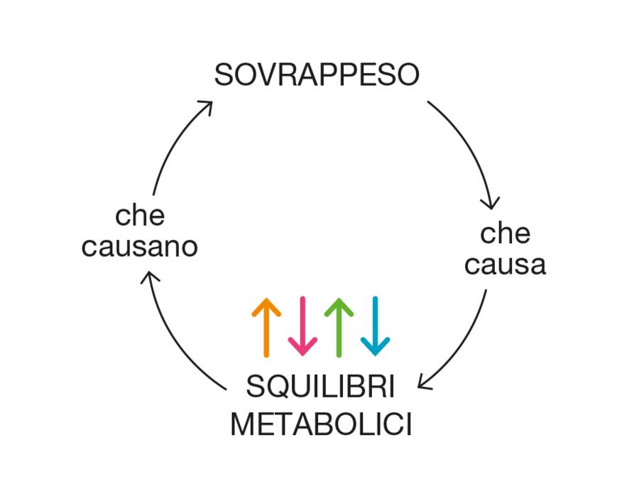 sindrome metabolica slim metabolismo