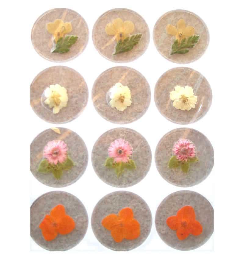 12 Fiori secchi - Nail Art