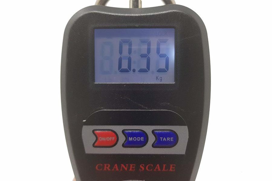 Bilancia Digitale Professionale Industriale Gancio Dinamometro Molla 200 kg
