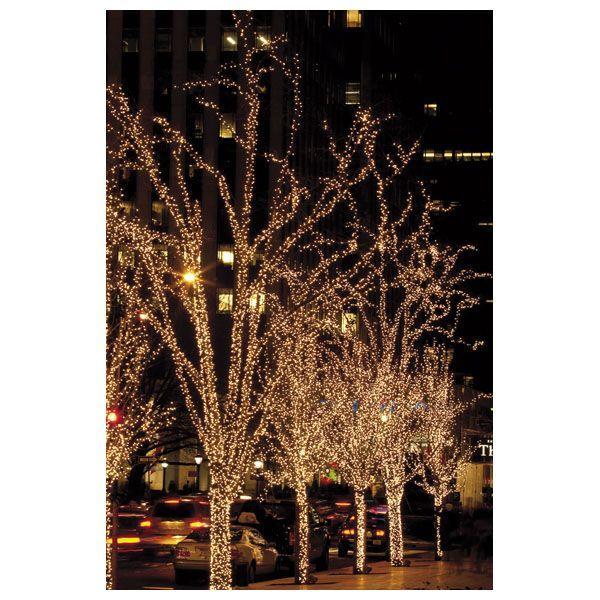 SHOWTEC - LED RUBBER TWINKLE LIGHT WW