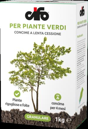 Concime Granulare Piante Verdi Cifo 1 Kg