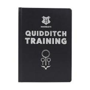 Harry Potter - Notebook Quidditch Training