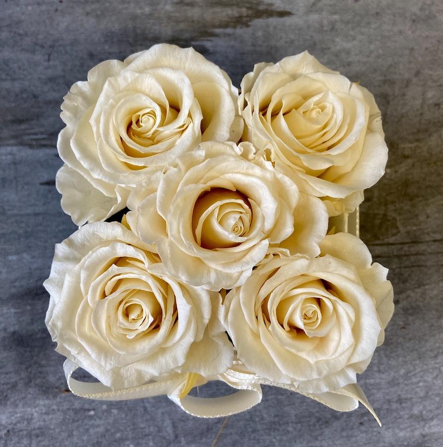 FLOWER BOX Q5 Rossana Collection AVORIO