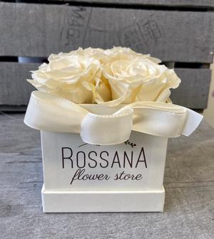 FLOWER BOX Q5 Rossana Collection AVORIO