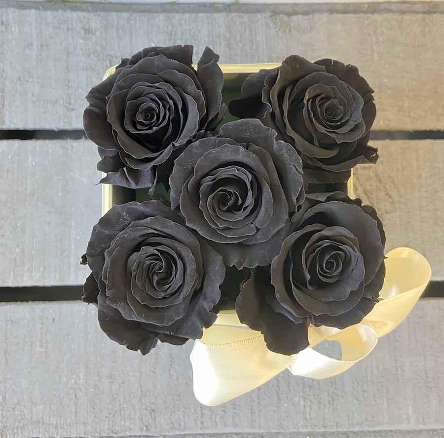 FLOWER BOX Q5 Rossana Collection NERO