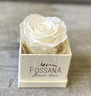 FLOWER BOXettino Rossana Collection BIANCO