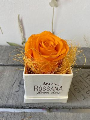 FLOWER BOXettino Rossana Collection ARANCIO
