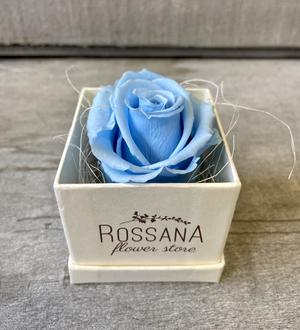 FLOWER BOXettino Rossana Collection AZZURRO