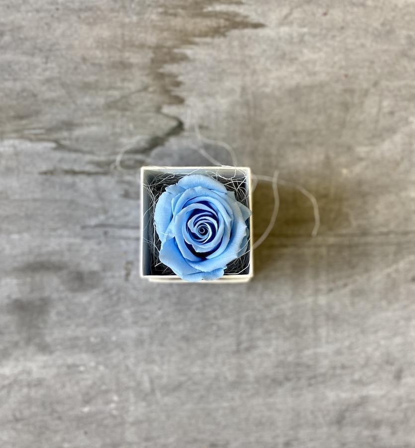 FLOWER BOXettino Rossana Collection AZZURRO