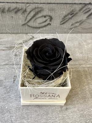 FLOWER BOXettino Rossana Collection NERO