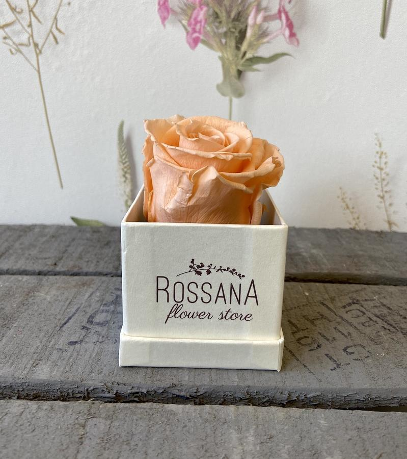 FLOWER BOXettino Rossana Collection PESCA