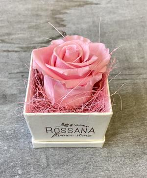 FLOWER BOXettino Rossana Collection ROSA