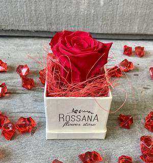 FLOWER BOXettino Rossana Collection ROSSO
