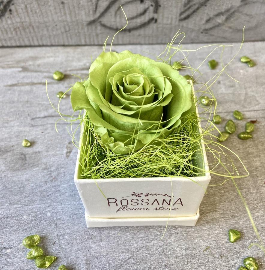 FLOWER BOXettino Rossana Collection VERDE