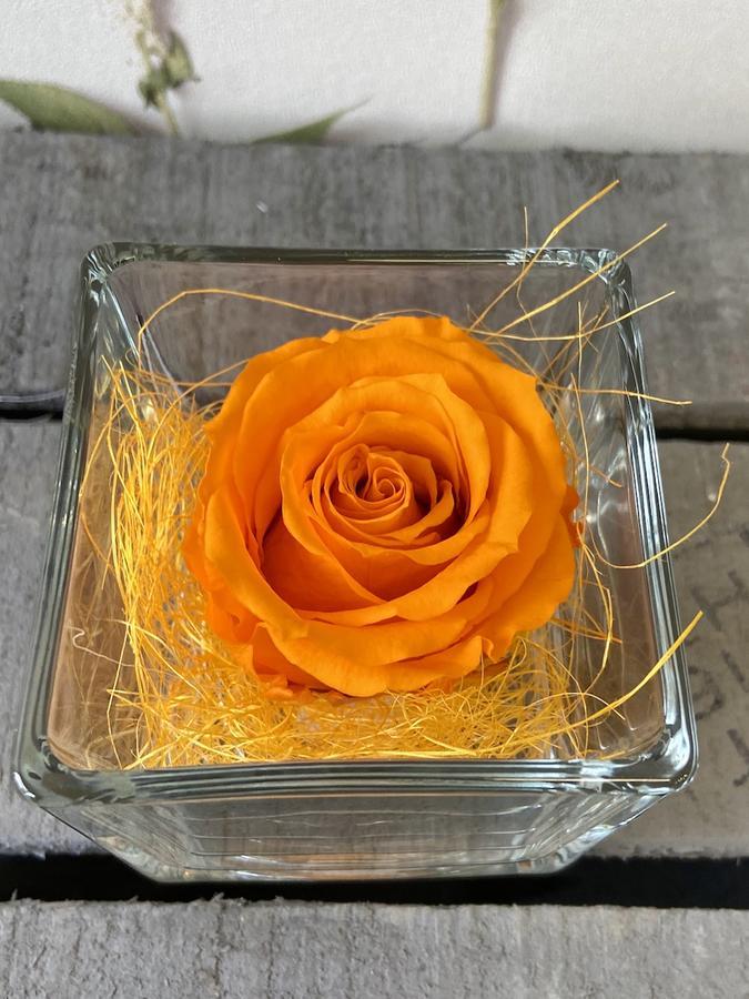 FLOWER CUBEttino Rossana Collection ARANCIO