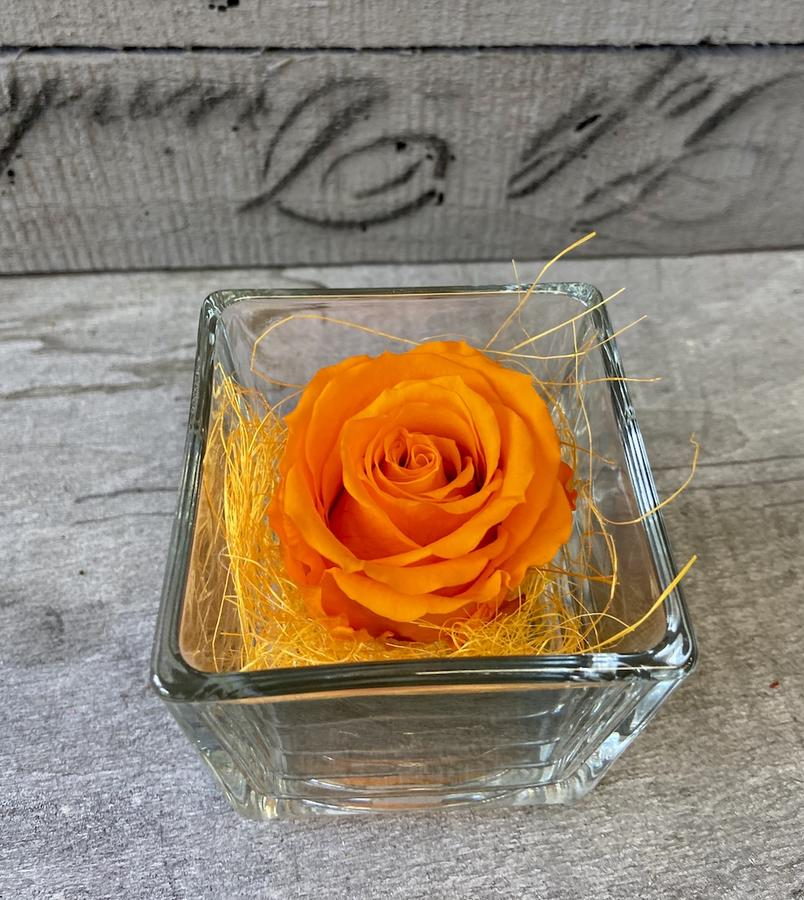 FLOWER CUBEttino Rossana Collection ARANCIO