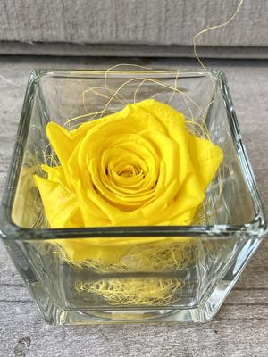 FLOWER CUBEttino Rossana Collection GIALLO
