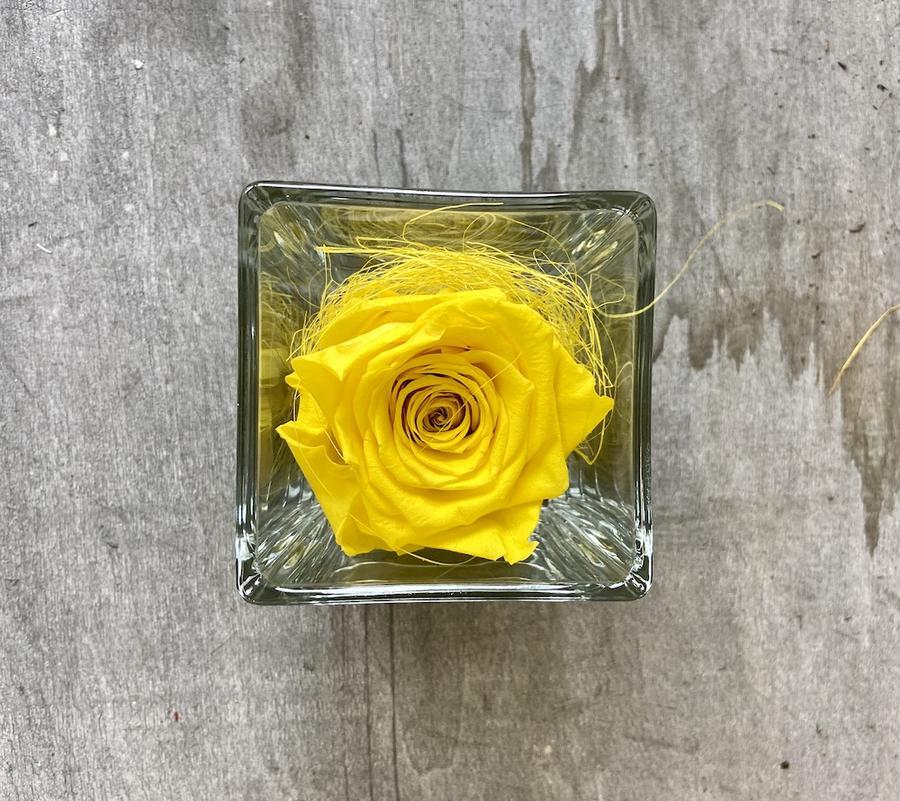 FLOWER CUBEttino Rossana Collection GIALLO