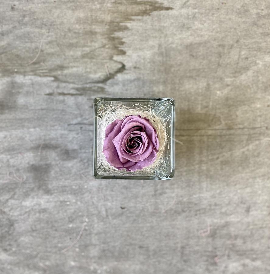 FLOWER CUBEttino Rossana Collection LILLA