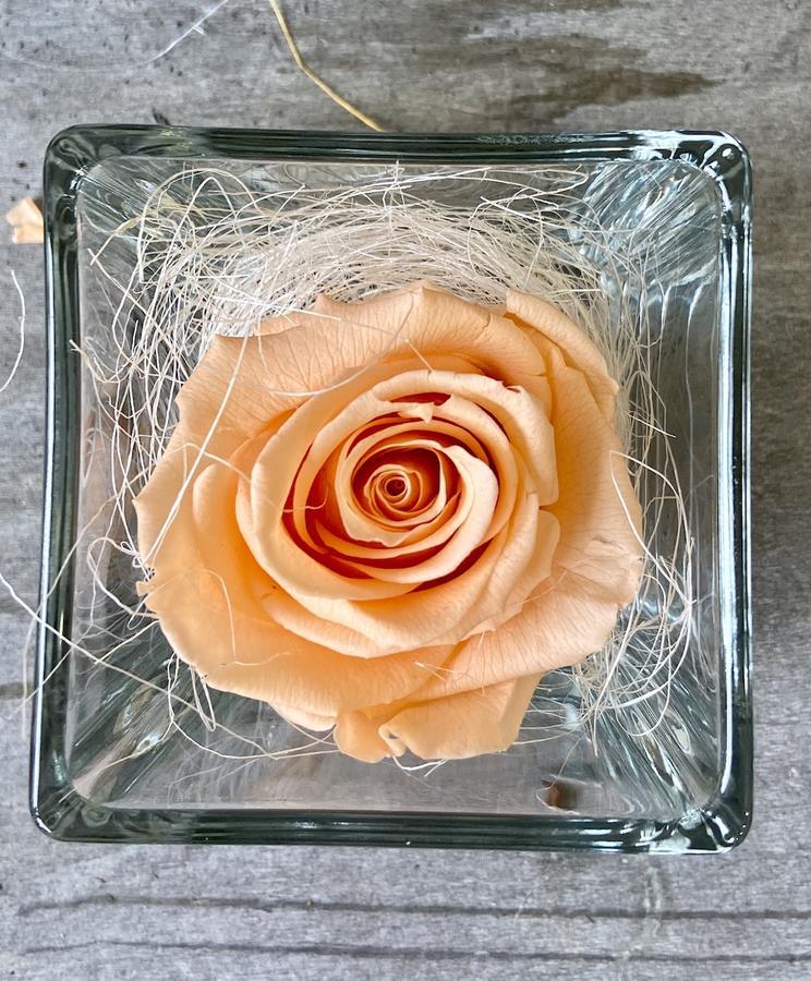 FLOWER CUBEttino Rossana Collection PESCA