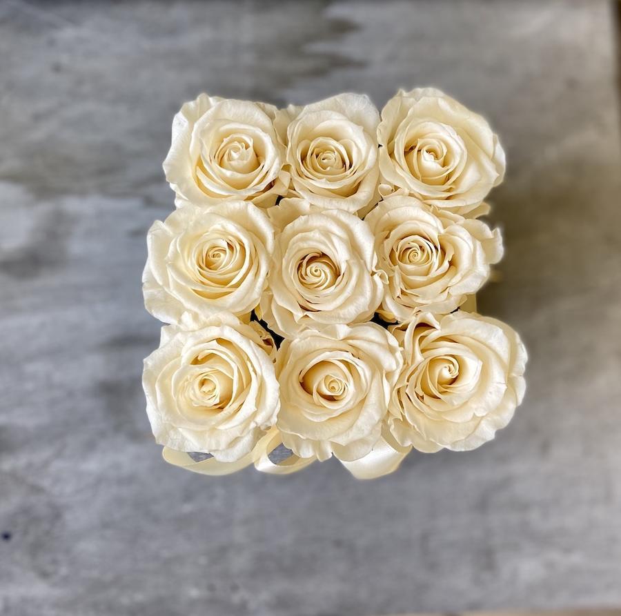 FLOWER BOX Q9 Rossana Collection AVORIO