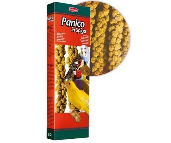 Padovan Panico in Spiga Bastoncini Mangime Per uccelli Granivori Canarini Cocorite Esotici