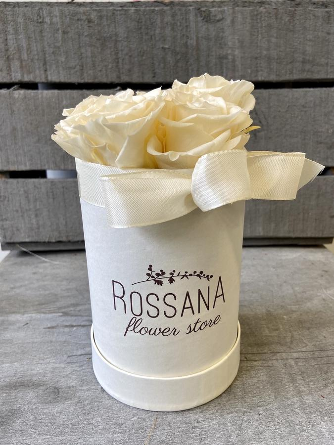 FLOWER BOX T5 Rossana Collection AVORIO