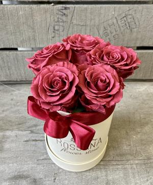 FLOWER BOX T5 Rossana Collection CRANBERRY