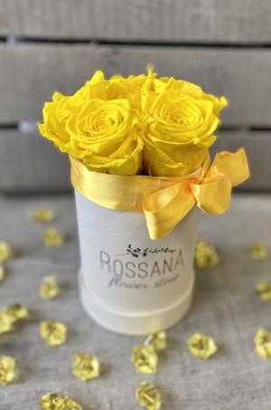 FLOWER BOX T5 Rossana Collection GIALLO