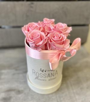 FLOWER BOX T5 Rossana Collection ROSA