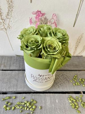 FLOWER BOX T5 Rossana Collection VERDE