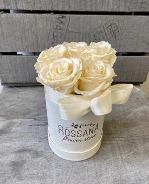 FLOWER BOX T7 Rossana Collection AVORIO