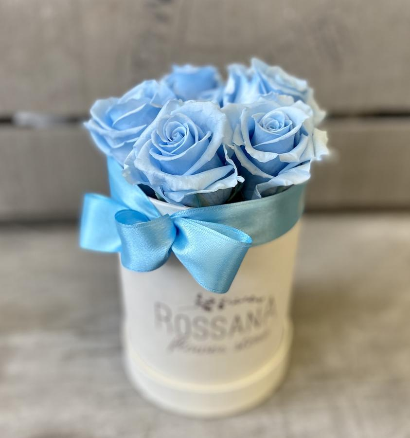 FLOWER BOX T7 Rossana Collection AZZURRO
